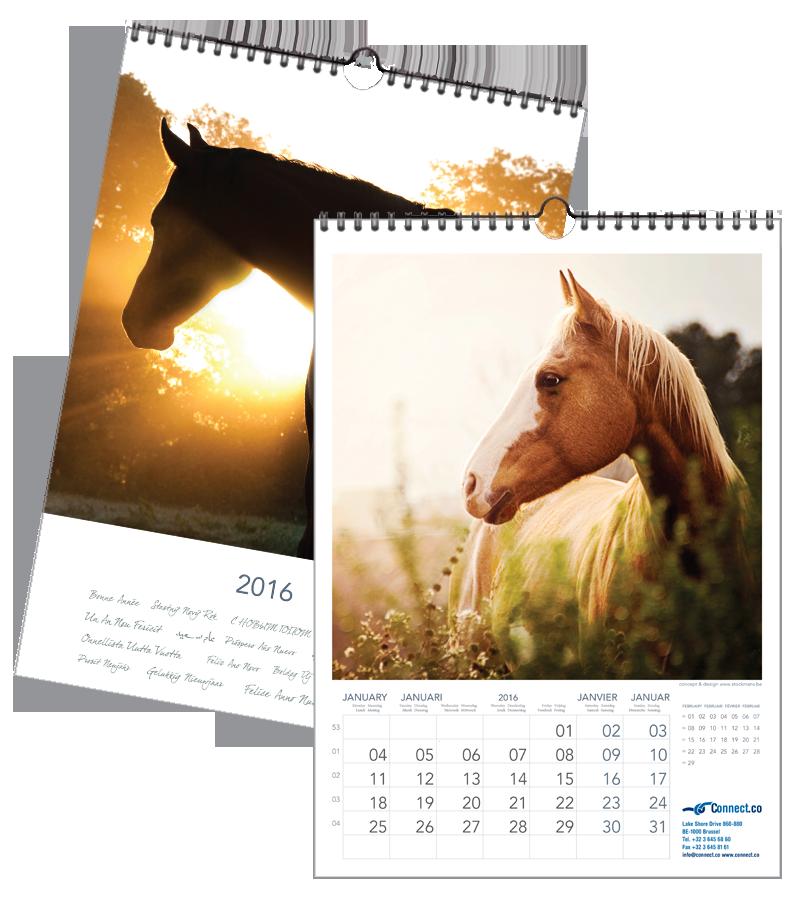 Paarden Romantisch | 297 x 420mm