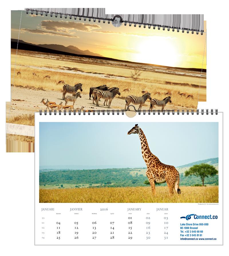 Safari | 420 x 297 mm