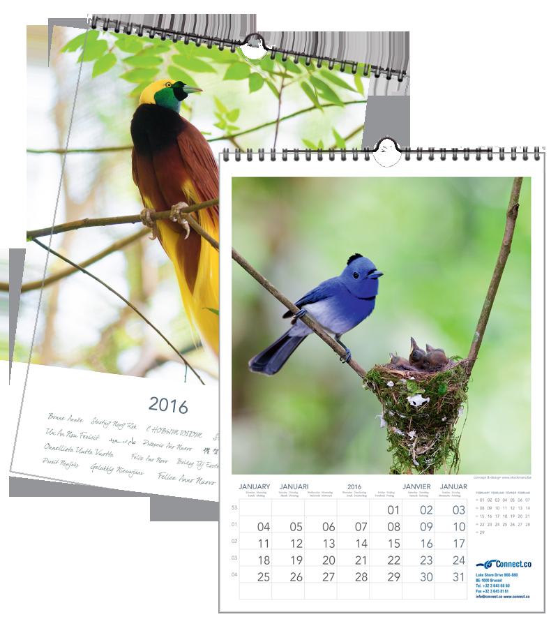 Vogels Tropisch | 297 x 420 mm