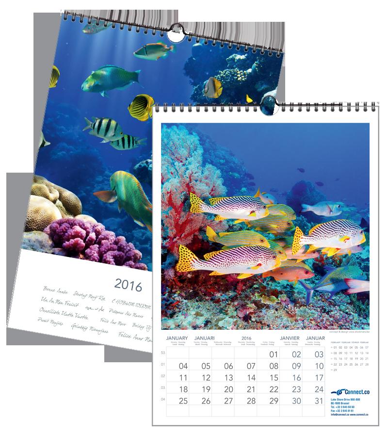 Vissen Tropisch | 297 x 420 mm