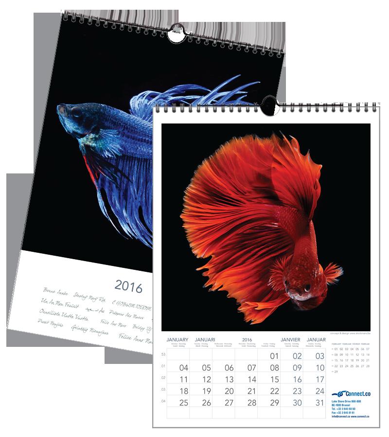 Vissen | 297 x 420 mm