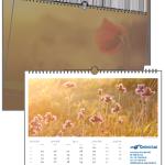 Blumen Romantisch | 420 x 297 mm